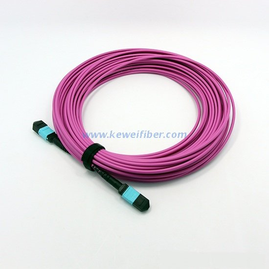 Armored MTP trunk cable